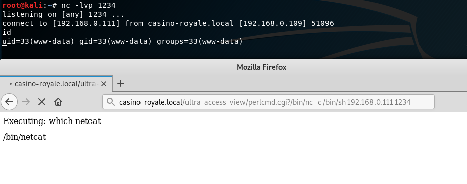 nc -Ivp 1234  listening on (any] 1234  uidz33(wm•'• data)  Mozilla Firefox  • casino.royale.local/ultrc x +  Executing: which netcat  fbinfnetcat